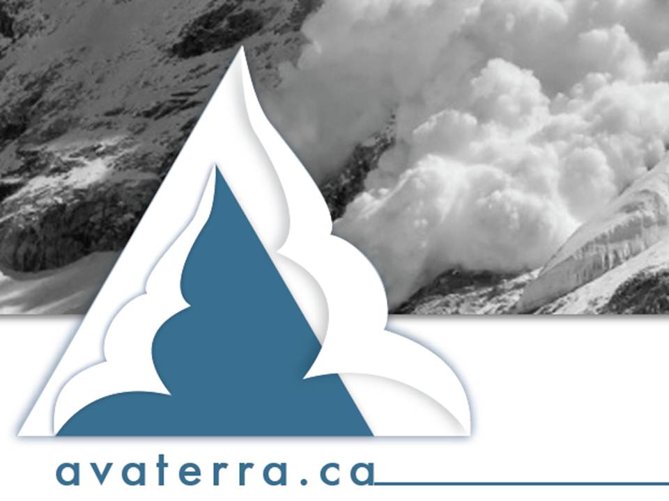 Ava Terra Services Inc.